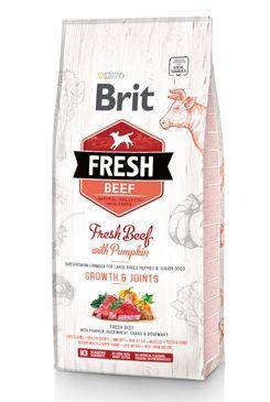 Brit Fresh Beef with Pumpkin Puppy Large